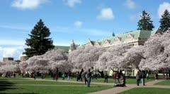 University of Washington Campus Arkistovideo