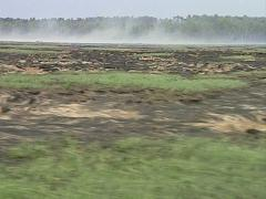 Burning peatbog Stock Footage