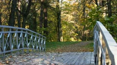Bridge over the creek and defoliation Stock Footage