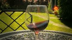 vine - stock footage