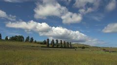 Rapa Nui Ahu Akivi with cloud s15 Stock Footage