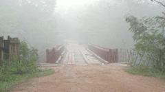 Bridge in the Jungle mist Stock Footage