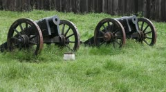 Antique guns - stock footage