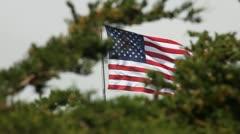 Flagpole Stock Footage