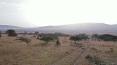 Panoramic shot of the Serengeti of Tanzania Stock Footage