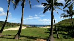 Anakena Beach palm frame on Easter Island Stock Footage