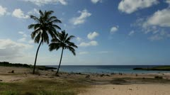 Anakena Beach with palms Easter Island  Stock Footage