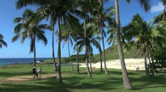 Easter Island Anakena shady palm grove stroll 2b Stock Footage