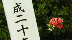 Japanese Text carved on a tree pole 02 focus on flower Stock Footage
