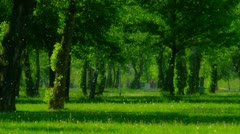 Spring (or summer) snow - Park in the Zagreb Stock Footage