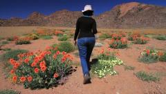 Woman Walks into Field of Flowers, Namaqualand GFHD Stock Footage
