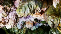 Formations On Ceiling Of Underground River Cave Dripping Water Stock Footage