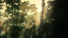 Forest Psychodelic 16mm Super8 - stock footage