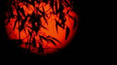 Transit of Venus 2012 22-1 Focus In & Out - stock footage