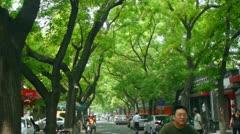 Beijing Guozijian college in China (Confucian temple) Stock Footage