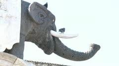 Elephant Fountain in Catania City. Stock Footage