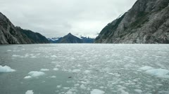 Ice floating from glacier Alaska P HD 8350 Stock Footage