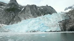 Northwest Glacial Kenai Peninsula P HD 8334 Stock Footage