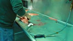 Salmon cleaning sink Valdez Alaska P HD 8175 Stock Footage