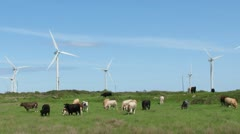 Wind Farm 4 Stock Footage