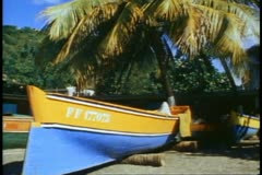 Martinique, medium shot, beach, blue and yellow boat, palms, tilt down Stock Footage