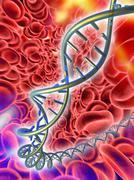 dna molecule, computer artwork - stock illustration