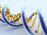 Stock Illustration of dna molecule, artwork