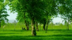 Park in the Zagreb capital of Croatia Stock Footage