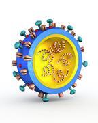 H1n1 flu virus particle, artwork Stock Illustration