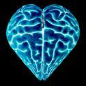 Heart-shaped brain, conceptual artwork Stock Illustration