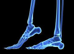 The bones of the feet, comuter artwork Stock Illustration