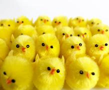 Stock Photo of toy chicks