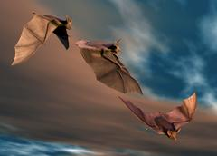 Bats in flight, artwork Stock Illustration