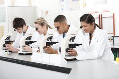 Stock Photo of biology lesson