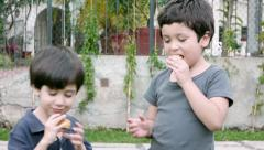 Boys Share Twinky Cake (HD) - stock footage