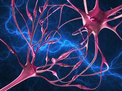 Nerve synapses, artwork Stock Illustration