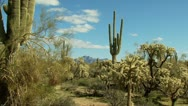 Superstition Mountains Arizona Stock Footage
