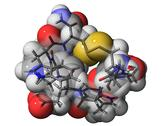 Cone snail venom component molecule Stock Illustration