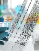 Genetic research Stock Photos