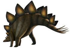 Artwork of a stegosaurus dinosaur Stock Illustration