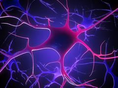 Nerve cells, artwork Stock Illustration