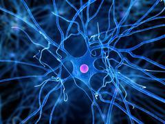 Nerve cell, artwork Stock Illustration