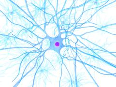 nerve cell, artwork - stock illustration