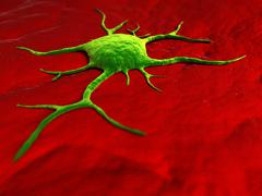 Cancer cell, conceptual artwork Stock Illustration