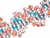 Dna molecule, artwork Stock Illustration