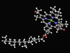 Chlorophyll b molecule Stock Illustration