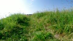Green meadow /walk on trope Stock Footage