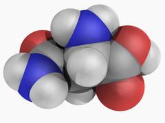 Asparagine molecule Stock Illustration