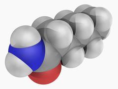 Hexanamide molecule Stock Illustration