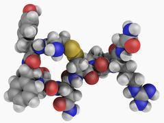 Vasopressin hormone molecule Stock Illustration